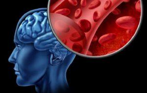 Кислород в клетках (организме)