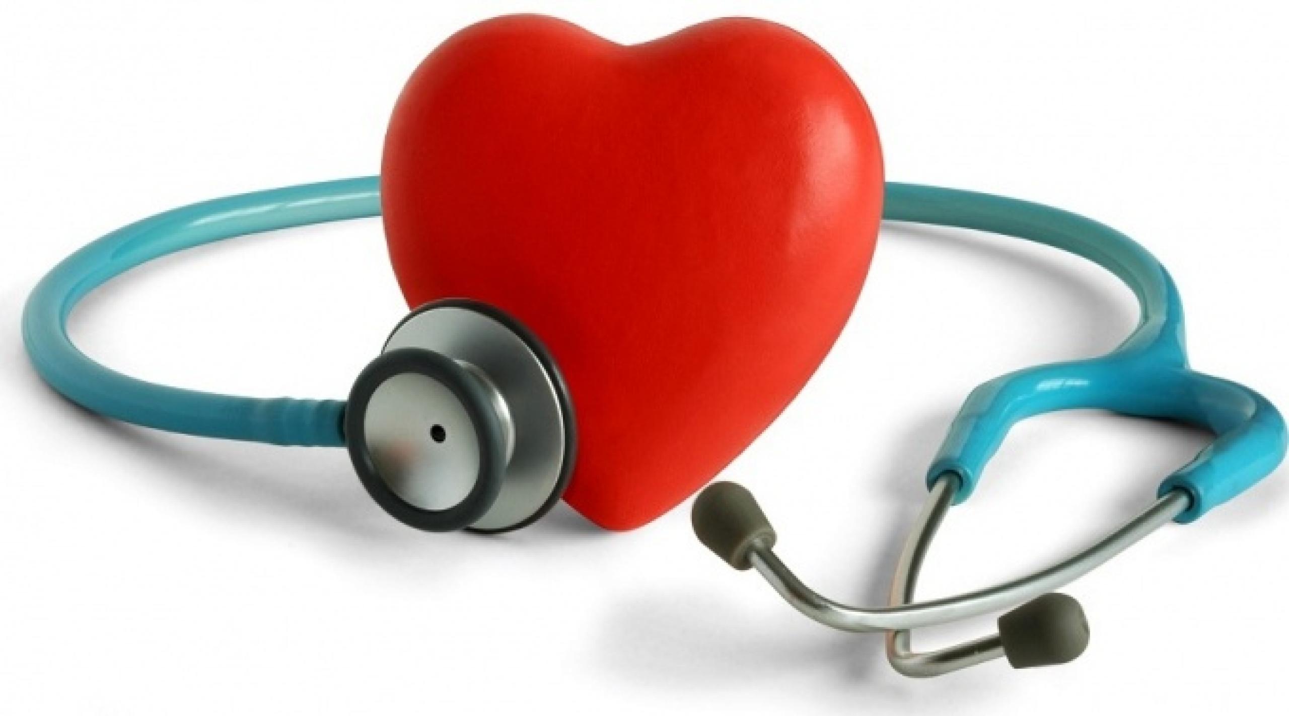 особенности сердечной мышцы