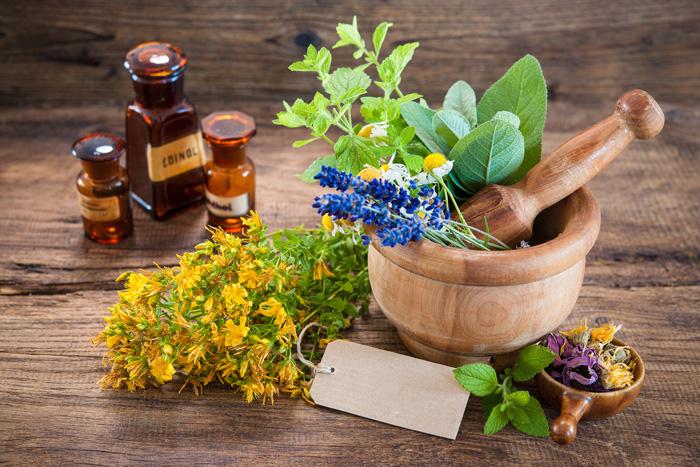 лечебные травы кавказа