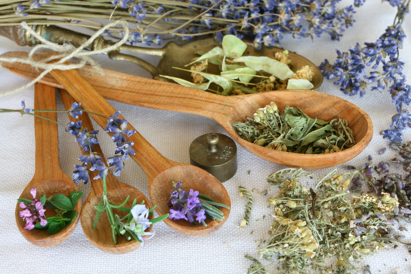 лечебные травы урала