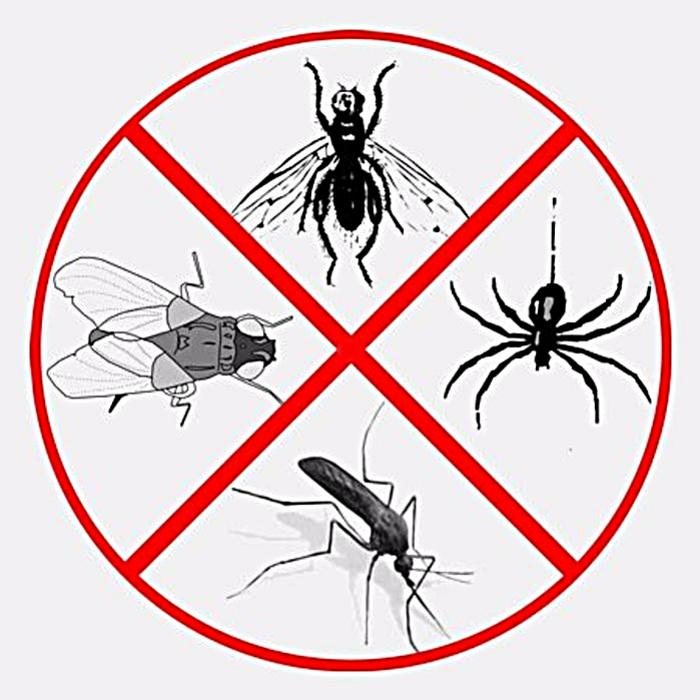 способы защиты от насекомых на природе