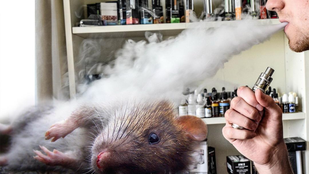вред от вейпа без никотина