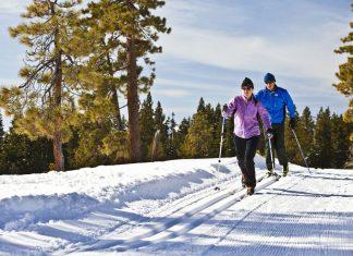 беговые лыжи польза для здоровья