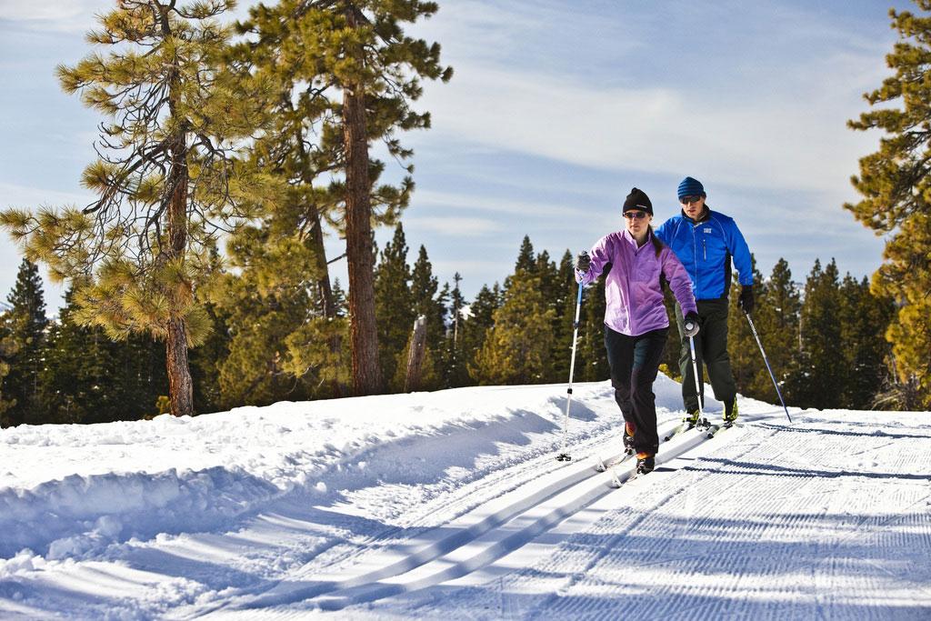 Картинки по запросу беговые лыжи