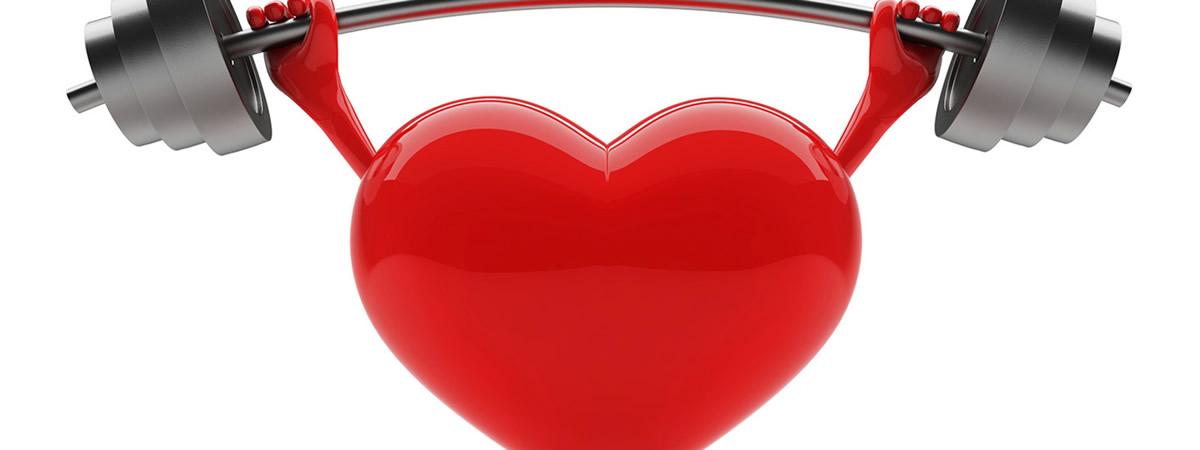 укрепление сердечно сосудистой системы физическими упражнениями