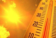 как перенести жару летом